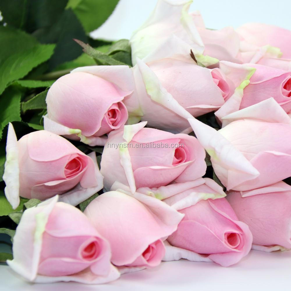 Rose Bud Manufacturers Rose Bud Manufacturers Suppliers And