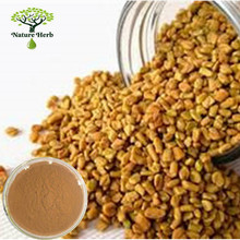 Black fenugreek seed extract powder | common fenugreek seed p.e.