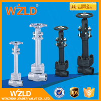 WZLD 1Inch A216 Wcb, Water,Steam,Oil Medium Flanged Type Cryogenic Gate Valve