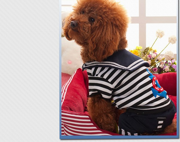 2015 new dog apparel and accessories pet products