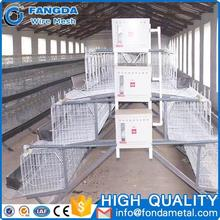 Made In Guangzhou factory 4 tier chicken layer battery cage for tanzania poultry farm