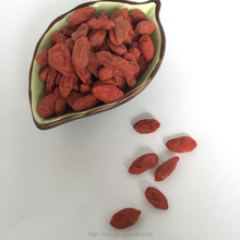 2012 Gouqi High Quality Organic China Goji Berries