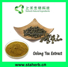Oolong Tea Leaf Extract 20%-80% Polyphenols,Ooling Tea Extract Polyphenols