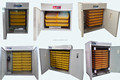 Hot Selling New Model Chicken Egg Incubator/Incubators for Hatching