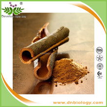 DN Biology 100% Pure Natural High Quality Cinnamon extract /Cortex Cinnamomi Cassiae