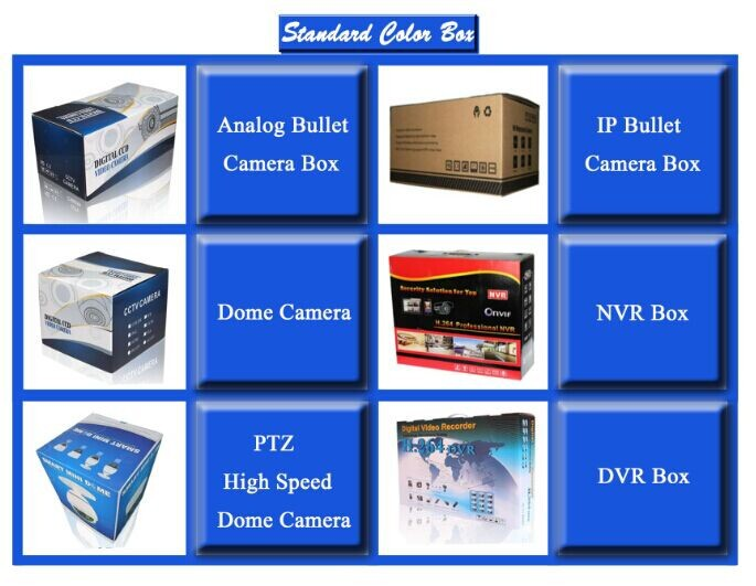 Best Price 700tvl Day&Night CCTV Waterproof IR Camera chinese surveillance cameras