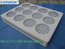 Reduce the plant growth cycle led grow light kit NOVA T12 Series high par value led grow lights