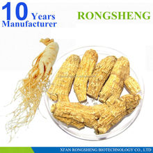 Best quality natural extract ginseng cordyceps