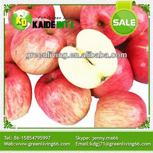 China Fresh Red Honey Fuji Apples For Sale