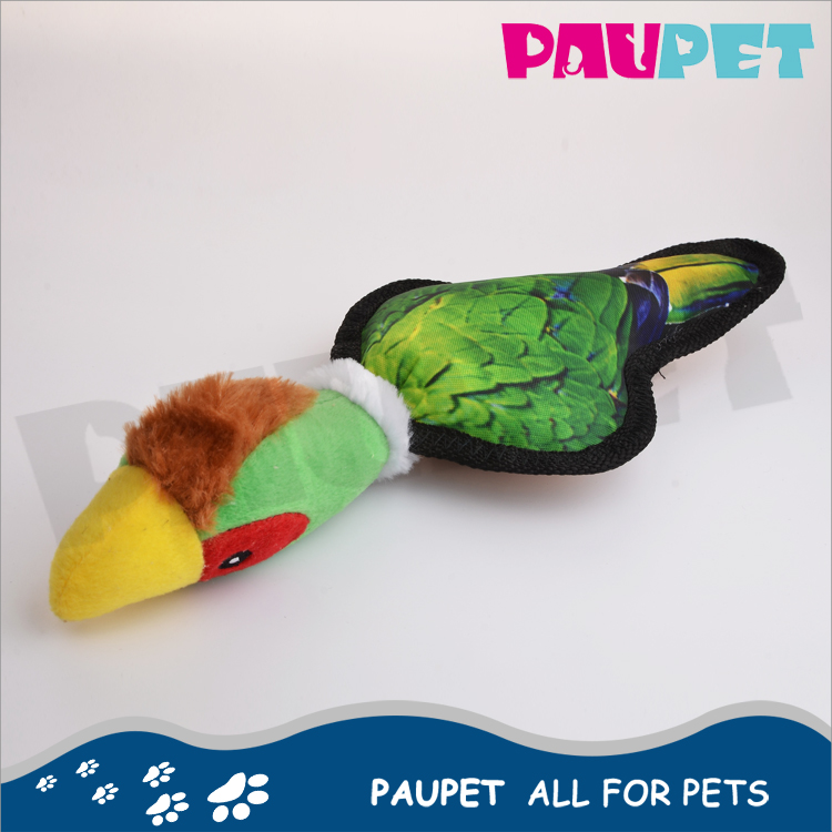 With quality warrantee fashion wonder cute live birds pet toy for sale