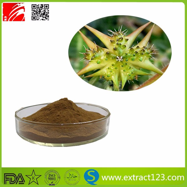 Aponin 40% 90% tribulus terrestris extract powder