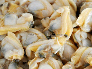 new shellfish frozen shell clam meat