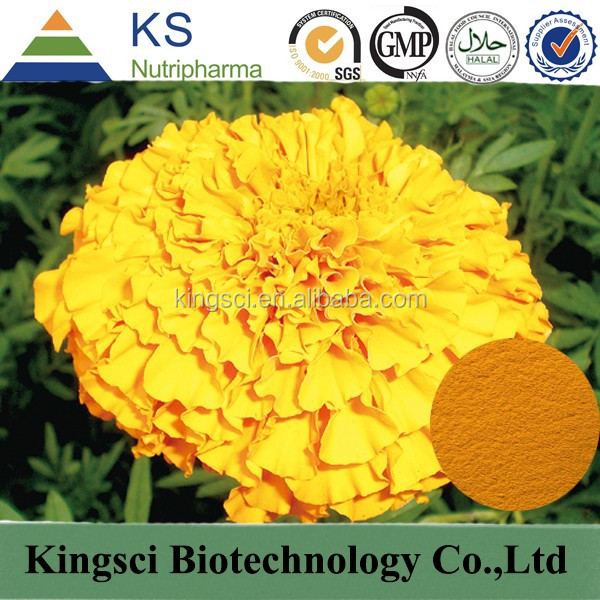 cGMP Manufacture Supply Food Grade 100% Organic Tagetes Erecta Extract Zeaxanthin KS-01