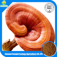 100% Pure and Organic Lucid Ganoderma P.E. with Favorable Price