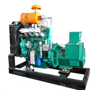 2014 hot sale nature gas generator price SD-50
