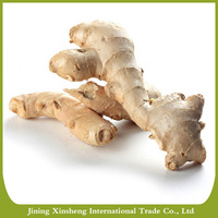 New crops wholesale cheap price air dried ginger