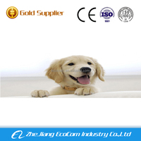 new products good quality pet products pet pad/puppy training pads/dog pee pad