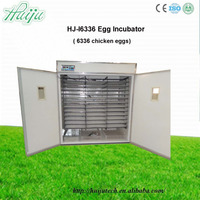 10000 chicken egg incubator/incubator circuits/animal incubator