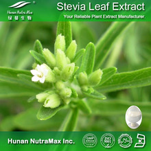 Free sample plant extract hot selling high quality sweetener raw material stevia powder