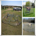 Factory direct sold cheap horse fence panels