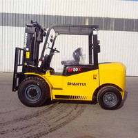 normal 5 Ton container lifting forklift
