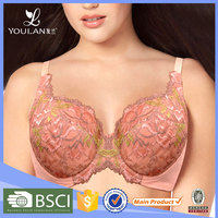 Wholesale Price Stylish Plus Size hot sexy bra