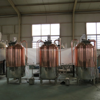 500L craft beer brewing equipment with bright beer tank