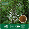 100% Natural remedies for kidney stone, Black Cohosh Extract