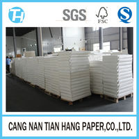 TIAN HANG high quality 1 side pe coated cup paper