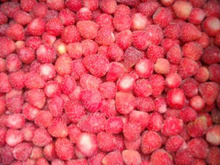 Chinese box /bulk frozen strawberries whole