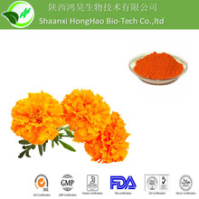 5%-75% UV lutein powder/eye vitamins lutein zeaxanthin/marigold extract