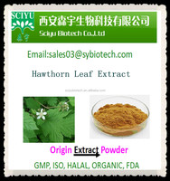 High Quality and Lower Price Natural Hawthorn Leaf Extract 5:1 10:1 20:1