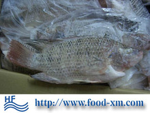 On Sale Lowest Price Sell Frozen Tilapia Tilapia frozen fish for sale