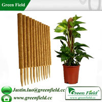 Green Field Flower Supporting Coir Plant Sticks