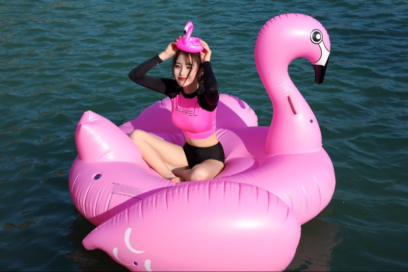 New giant Swan Inflatable Floats Inflatable Flamingo Float adult pool floats swimming pool toys