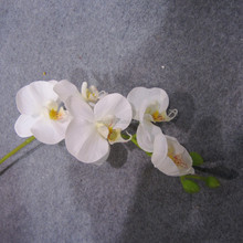 artificial mini flower orchids wholesale white orchid flower lifelike 5 heads Preserved Orchids for decor