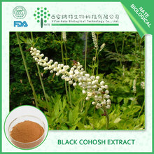 Black Cohosh Extract HOT sale with 5%-8% triterpene glycosides
