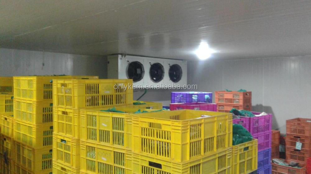 Gas R22 Meat and Fish Cold Storage with PUF Panel Price and Cold Storage Machine