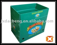 Green Vegetable Plastic PP Turnover Box