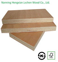 From Guangxi China hardwood india prices plywood for doors design