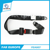 Simple 2-Point European Standard Safety Belt