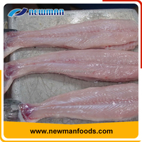 New arrival vacuum pack fresh skinless vietnam iqf frozen pangasius fish fillet price