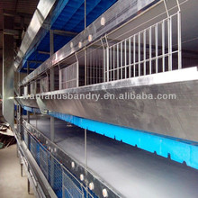 new design Multi-tier chicken/broiler cage for poultry