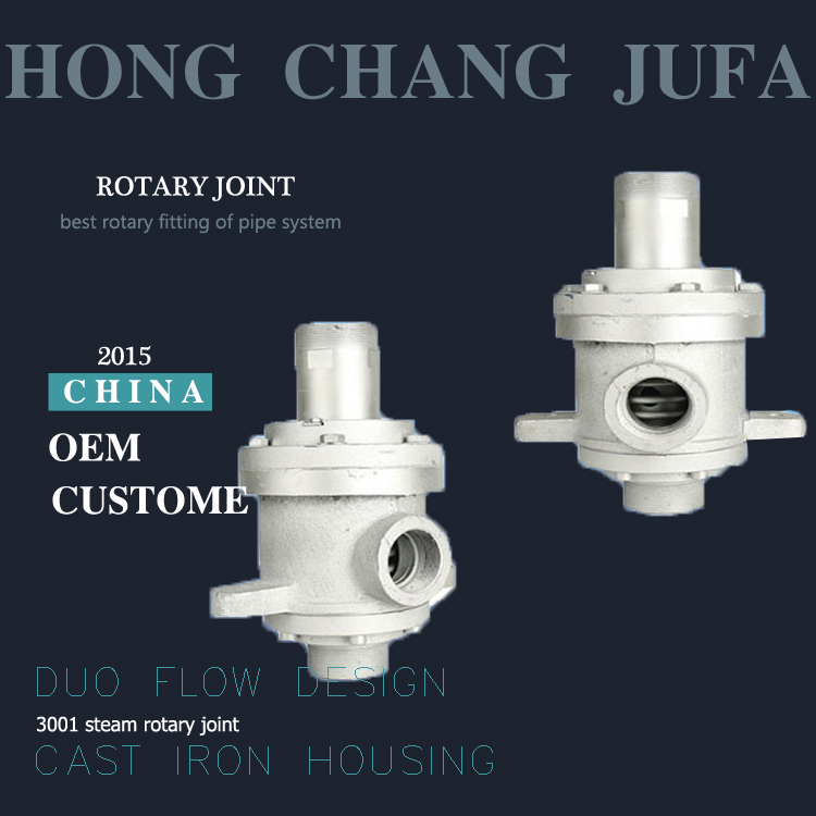 High pressure steam fitting threaded pipe coupling swivel rotary joint