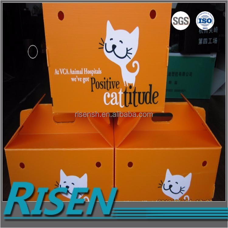 PP plastic sheet made custom pet box with custom printing dog house 2017 new product