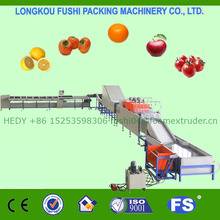 CE/ISO9001 Approved Mango Washing Drying Grading Machine