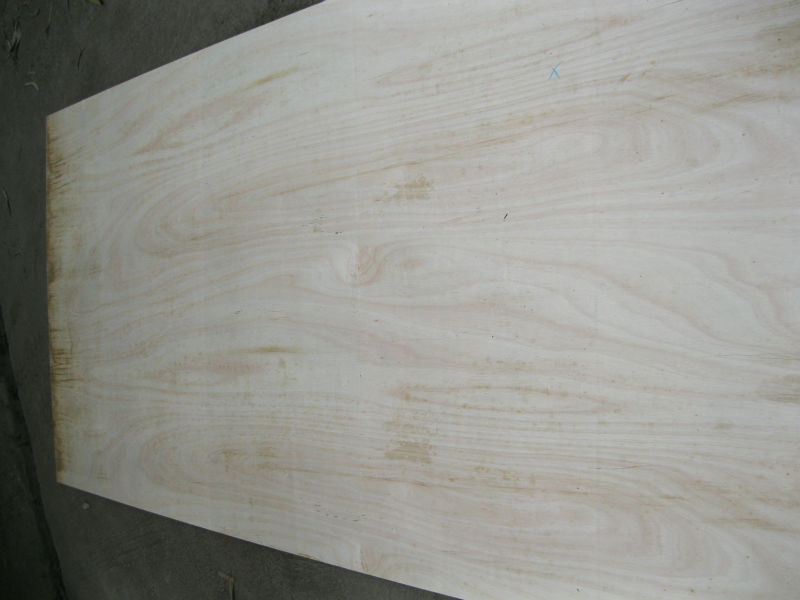 Plywood size 1230 x 2440mm for Japan