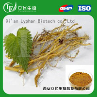 Lyphar Provide High Purity Nettle Root Extract