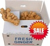 Fresh Ginger 10kg/carton , shandong crop, have store, hot sale