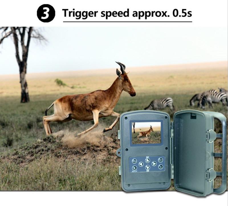 Hunting camera TC003 14.jpg